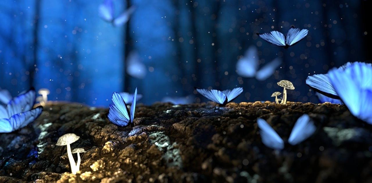 snovi o leptirima ne mogu da zaspim
